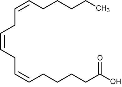 what is gamma linolenic acid