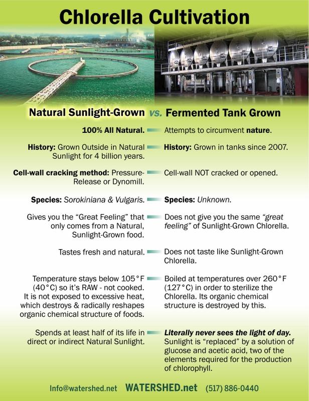 Chlorella-Cultivation_fermented_sunlight