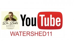 YouTube_Dr Bobs
