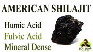 American Shilajit - Humic Acid Fulvic Acid